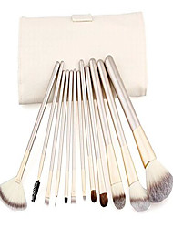 cheap -putwo make up brushes 12 piece set with makeup kit - white, 9.14 ounce