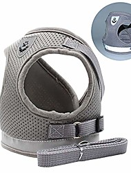 cheap -dog cat harness vest, pet soft safety mesh breathable leash set with 2 metal buckle for kitties, puppy