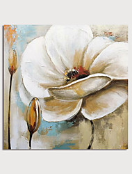 cheap -Oil Painting Hand Painted Square Floral / Botanical Modern Stretched Canvas