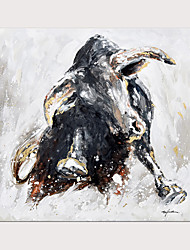 cheap -Oil Painting Hand Painted Square Abstract Animals Modern Rolled Canvas (No Frame)