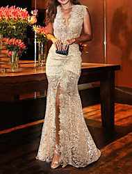 cheap -Mermaid / Trumpet Sexy Floral Engagement Formal Evening Dress V Neck Sleeveless Sweep / Brush Train Lace with Split 2021