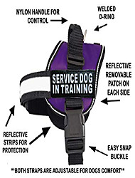 cheap -service dog in training vest with hook and loop straps and handle – harness comes in sizes xxs to xxl – three colors – dog harness features 2 reflective patches purple