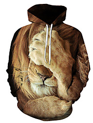 cheap -Men's Pullover Hoodie Sweatshirt Graphic Lion Daily Weekend 3D Print Casual Hoodies Sweatshirts  1# 2# Rainbow