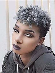 cheap -afro curly synthetic wigs for black women short black curly wigs for black women african american short gray wigs (gray)