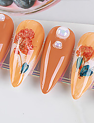 cheap -No. 9 Real Flower Dried Flower Material Sunflower Immortal Flower Small Daisy Blue Enchantress Epoxy Real Dried Flower Diy Nail Art
