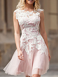 cheap -A-Line Elegant Floral Engagement Cocktail Party Dress Jewel Neck Sleeveless Short / Mini Tulle with Pleats Appliques 2021
