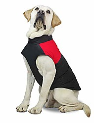 cheap -dog vest cotton coat waterproof windproof dog jacket warm winter cold weather pet apparel for small medium large dogs