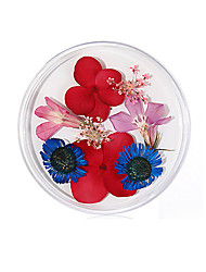 cheap -No. 10 Real Flower Dried Flower Material Sunflower Immortal Flower Small Daisy Blue Enchantress Epoxy Real Dried Flower Diy Nail Art