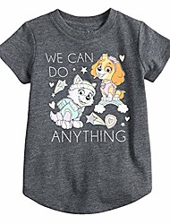 cheap -toddler girls 2t-5t paw patrol skye & everest we can do anything glittery graphic tee 4t charcoal heather