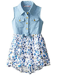 cheap -little girls' printed chiffon dress, blue, 3t