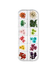 cheap -12PCS Nail Art Dried Flower Nail Immortal 3D Three-dimensional Lace Flower Hydrangea Narcissus Zou Chrysanthemum Set