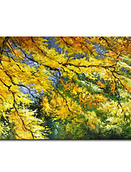 cheap -Mintura Large Size Hand Painted Trees Landscape Oil Painting on Canvas Modern Abstract Wall Art Picture For Home Decoration No Framed
