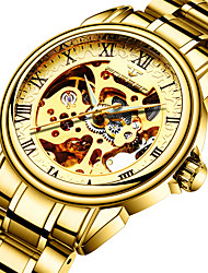 cheap -FNGEEN Men's Mechanical Watch Analog Automatic self-winding Modern Style Stylish Skeleton Hollow Engraving / One Year / Stainless Steel / Titanium Alloy