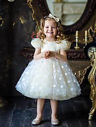 cheap -Princess / Ball Gown Knee Length Wedding / Party Flower Girl Dresses - Tulle Short Sleeve Jewel Neck with Appliques