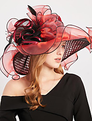 cheap -Vintage Style Elegant Organza / Polyester / Polyamide Hats / Headwear / Straw Hats with Feather / Appliques / Split Joint 1 Piece Casual / Holiday Headpiece