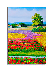 cheap -Oil Painting Hand Painted Abstract Landscape by Knife Canvas Painting Comtemporary Simple Modern without Frame Painting Only