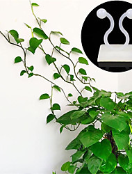 cheap -15Pcs Invisible Wall Vines Fixture Rattan Clamp Clip Wall Sticky Hook Climbing Vine Plant Fixer Home Balcony Garden Decor Holder