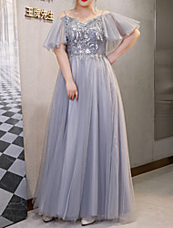 cheap -A-Line Plus Size Elegant Wedding Guest Formal Evening Dress Spaghetti Strap Short Sleeve Floor Length Tulle with Sequin Tassel 2021