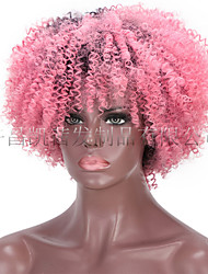 cheap -wigs, gradient colors, african small curly wigs, ladies chemical fiber headgear, kinky curly wig