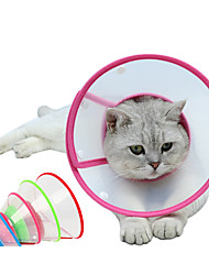 cheap -Dog Cat Pet Cone Pet Recovery Collar Elizabeth circle Adjustable Stress Relieving Safety Anti-Bite Lick Wound Healing After Surgery Protective Walking Solid Colored PP Small Dog Yellow Red Blue Pink