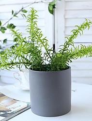 cheap -Simulation Aquatic Plant Flowers Simulation Pine Fern Simulation Succulent Bundle 1 Branch 26*10cm