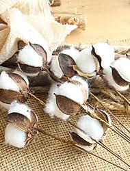 cheap -10 Cotton Branch Natural Dried Flower Imitation Bouquet