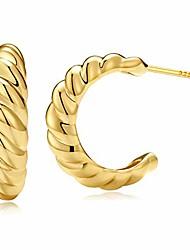 cheap -croissant dome hoop earrings for women 18k gold croissant earrings twisted round hoop earrings charlotte hoop 925 sterling silver earrings (18k open, 16)