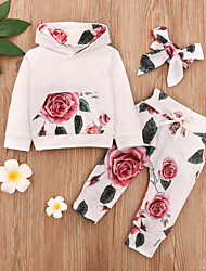 cheap -Baby Girls' Vintage Rose Floral Print Long Sleeve Regular Regular Clothing Set White