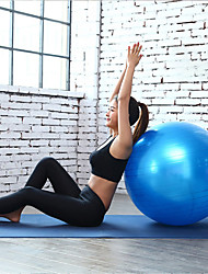 cheap -65cm Exercise Ball / Yoga Ball Explosion-Proof Stability PVC / Vinyl Support 65 kg With Foot Pump Balance Training for Yoga Pilates Workout