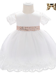cheap -Baby Girls' Basic Butterfly Solid Colored Mesh Bow Short Sleeve Baptism Knee-length Dress White Blushing Pink Wine