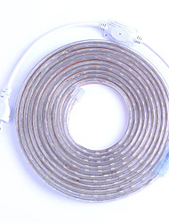cheap -LED Strip Flexible Light SMD 5050 AC220V 110V 60LEDs Waterproof LED Tape LED Light With Power Plug 5m 10m 1m