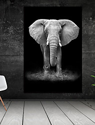 cheap -Wall Art Canvas Prints Painting Artwork Picture Elephant Animal Black White Home Decoration Décor Rolled Canvas No Frame Unframed Unstretched