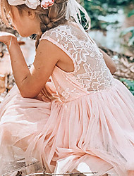cheap -Kids Little Girls' Dress Sundress Solid Colored Strap Dress Wedding Daily Holiday Backless Lace Blushing Pink Gray White Knee-length Sleeveless Princess Dresses Fall Spring Regular Fit 2-8 Years