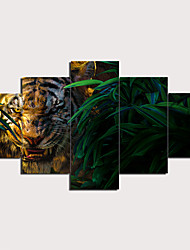 cheap -5 Panels Wall Art Canvas Prints Painting Artwork Picture Tiger Plants Animal Home Decoration Décor Rolled Canvas No Frame Unframed Unstretched