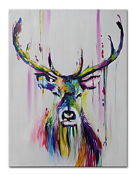 cheap -Oil Painting Handmade Hand Painted Wall Art Mintura Modern Abstract Animal Picture Home Decoration Decor Rolled Canvas No Frame Unstretched