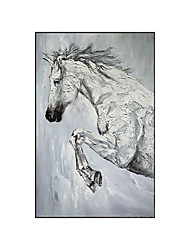 cheap -Oil Painting Handmade Hand Painted Wall Art Vertical Contemporary White Horse Animal Home Decoration Decor Rolled Canvas No Frame Unstretched