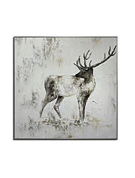 cheap -Oil Painting Handmade Hand Painted Wall Art Square Modern Elk Animal Home Decoration Decor Rolled Canvas No Frame Unstretched