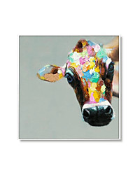 cheap -Oil Painting Handmade Hand Painted Wall Art Square Modern Cow Animal Picture Home Decoration Decor Rolled Canvas No Frame Unstretched