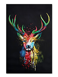 cheap -Oil Painting Handmade Hand Painted Wall Art Mintura Abstract Animal For Home Decoration Decor Rolled Canvas No Frame Unstretched