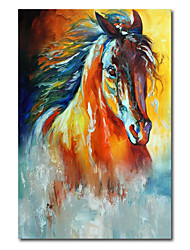 cheap -Oil Painting Handmade Hand Painted Wall Art Abstract Horse HeadOrange Animal Home Decoration Decor Stretched Frame Ready to Hang