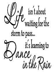 cheap -life isn't about waiting for the storm to pass… it's learning to dance in the rain vinyl wall decal inspirational quotes home wall decor(black)