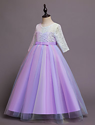 cheap -Kids Little Girls' Dress colour Tulle Dress Party Birthday Lace Purple Blushing Pink Maxi Long Sleeve Cute Dresses Children's Day Fall Spring 4-13 Years