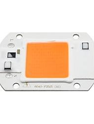cheap -10pcs 6pcs 1pc 20 W Growing Light Bulb 2000 lm LED Integrated 1 LED Beads COB Waterproof Full Spectrum