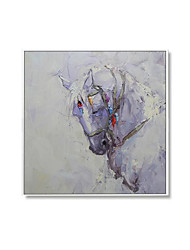 cheap -Oil Painting Handmade Hand Painted Wall Art Square Modern Abstract Horse Picture Home Decoration Decor Rolled Canvas No Frame Unstretched