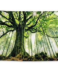 cheap -Nature Forest Thick Tree Wall Tapestry Large 3D Print Wall Art Hanging For bedroom Living Room Home Decor, Green and White Forest Scenery