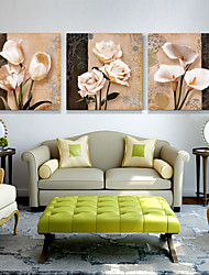 cheap -3 Panels Wall Art Canvas Prints Painting Artwork Picture Green Succulent Tropical Plant Home Decoration Decor Rolled Canvas No Frame Unframed Unstretched