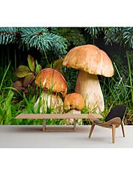 cheap -Mural Wallpaper Wall Sticker Covering Print Peel and Stick Removable Self Adhesive Plants Mushroom PVC / Vinyl Home Decor