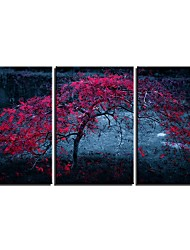 cheap -3 Panels Wall Art Canvas Prints Painting Artwork Picture Abstract Tree Home Decoration Decor Rolled Canvas No Frame Unframed Unstretched