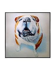 cheap -Oil Painting Handmade Hand Painted Wall Art Modern Cute Animal Dog Abstract Living Room Decor Home Decoration Decor Stretched Frame Ready to Hang
