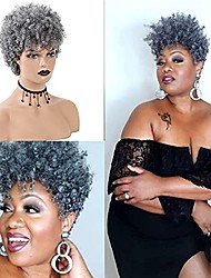 cheap -Short Grey Afro Curly Wigs for Black Women Mixed Gray Fluffy Kinky Curly Hair Synthetic Wig